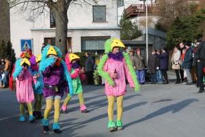 Karnevalszug Roßbach/Wied 2013